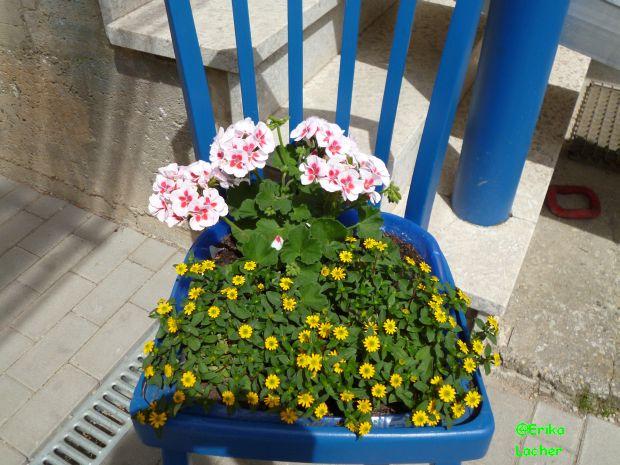 Stuhl deko erikas handarbeitsseite - Bepflanzter stuhl ...
